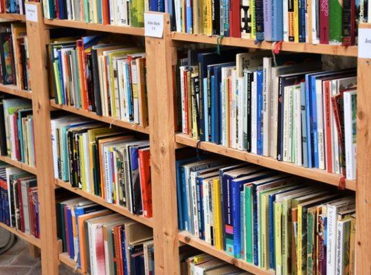 Biblion-recensie 'Niemand zoals hij' bibliotheek