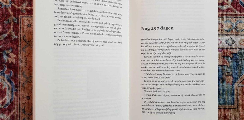 Structuur van een boek: verschil in perspectief per hoofdstuk in het debuut Niemand zoals hij dagboekvorm