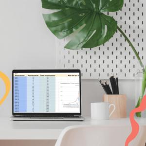 Met deze management schrijftool 'Mastersheet' kun je je woordenaantal bijhouden, plot maken, personages opbouwen, todo's uitschrijven en nog veel meer!